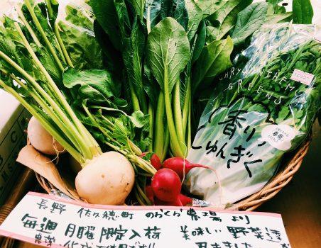 のらくら農場の野菜、始まりました!
